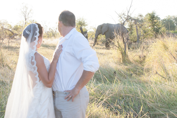 Safari Wedding In Botswana Http Julietlemon
