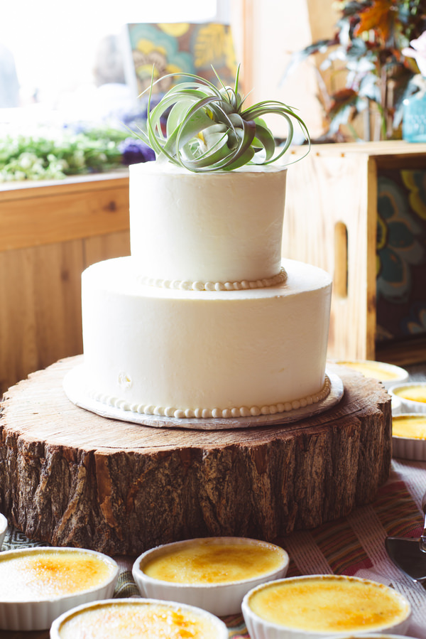 Bohemian Ranch Family Colorado Wedding Rustic Cake Air Plant http://fromthehipphoto.com/