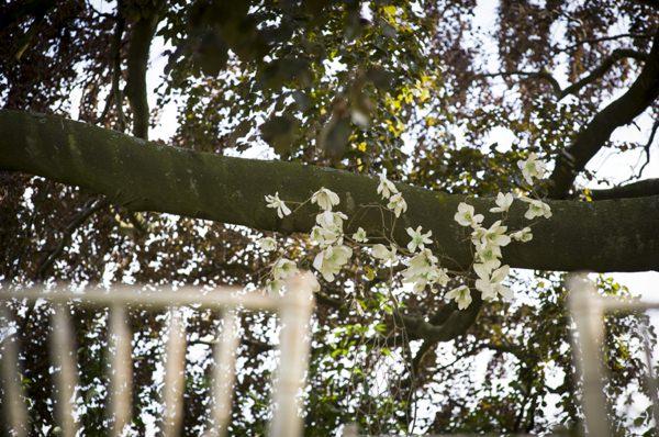 Ethereal Woodland Wedding Ideas http://www.careysheffield.com/