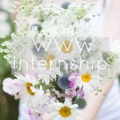The WWW Intern Opportunity