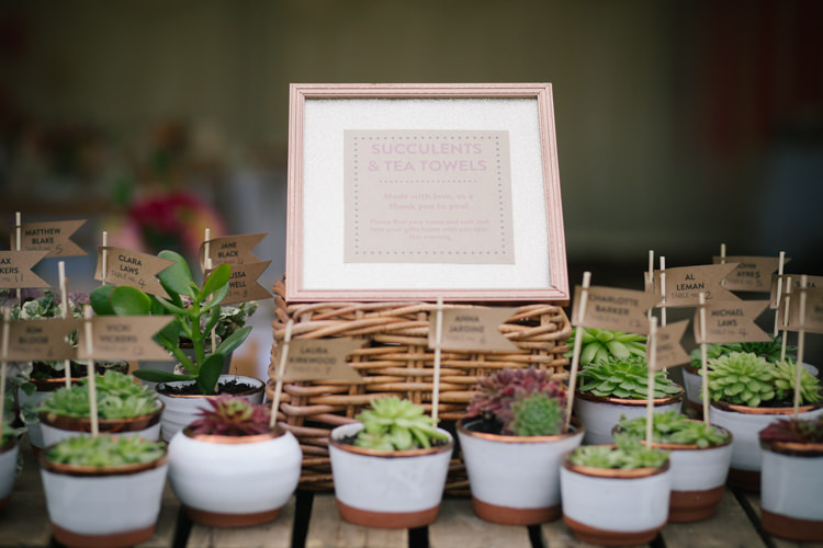 Succulent Favours Humanist Field Bright DIY Wedding http://www.christyblanch.com/