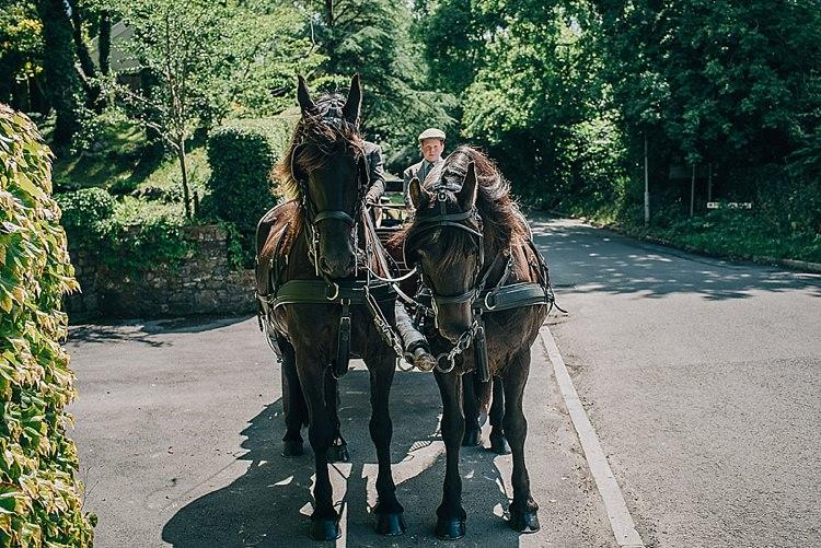 Horse Carriage Transport Casual Summery Rustic Beach Wild Horses Wedding http://www.jasonmarkharris.com/
