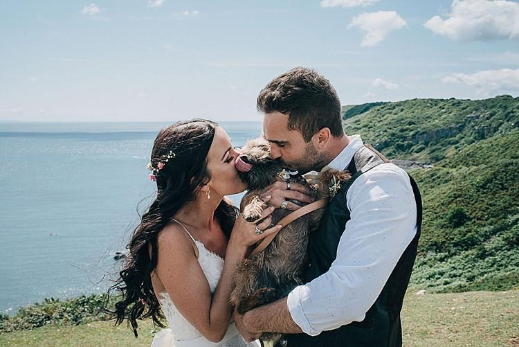 Dog Pet Wedding Ideas Help Adivce Planning http://www.jasonmarkharris.com/