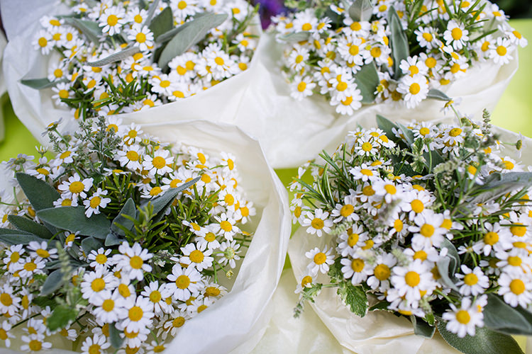 Daisies Daisy Bouquets Flowers Pretty Natural Floral Barn Wedding http://www.johastingsphotography.co.uk/