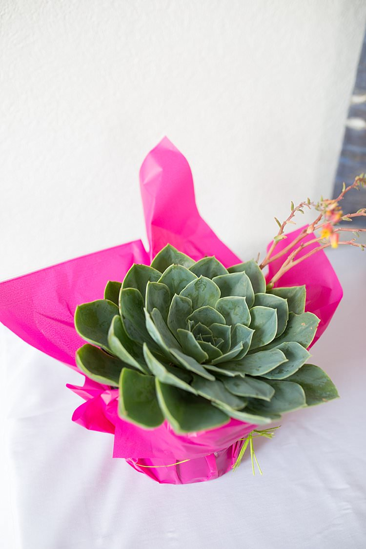 Succulent Pots Flowers Decor Bright Fresh Mexican Inspired Wedding http://www.photographybykatie.co.uk/