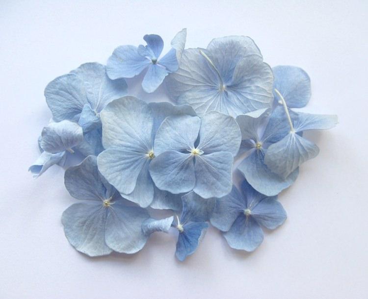 Dusky Blue Hydrangea Petals. Credit- The Real Flower Petal Confetti Company