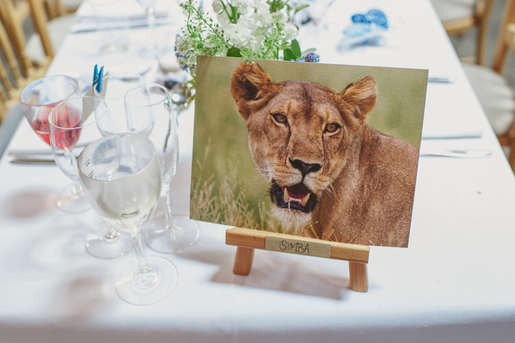 Animal Table Names Pretty Blue Country Barn Spring Wedding http://karenflowerphotography.com/