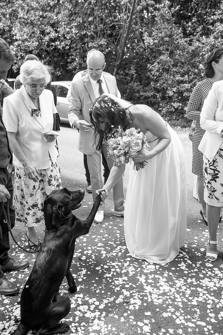 Dog Pet Puppy Natural Soft Stylish Luxe Wedding http://www.katherineashdown.co.uk/