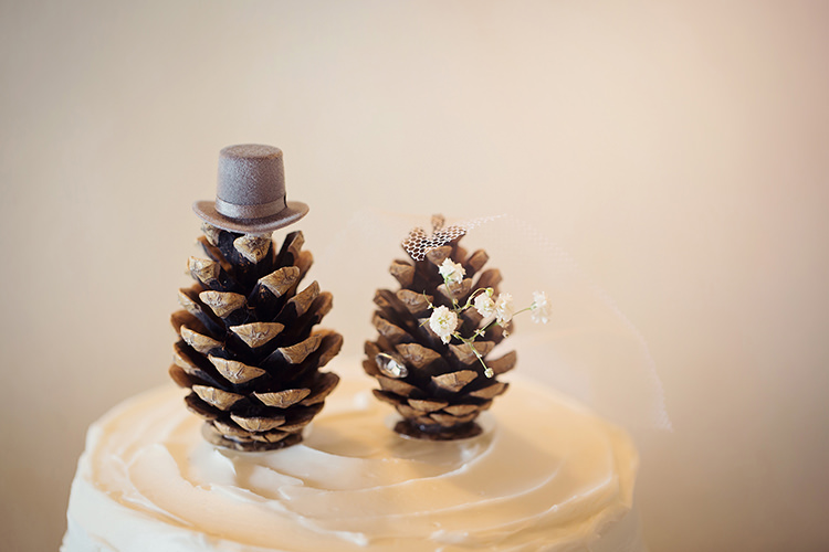 Pine Cone Cake Toppers Alpine Winter Christmas Wedding http://www.tireedawson.co.uk/