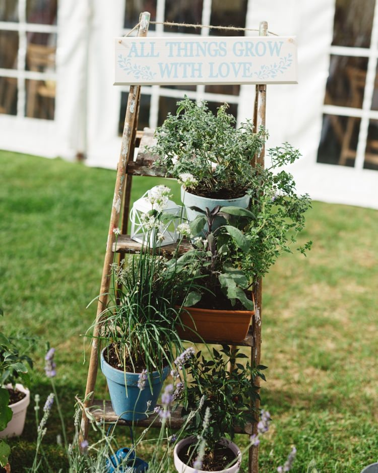 Ladder Flowers Potted Plants Boho Beer Festival Wedding http://www.emilysteve.com/