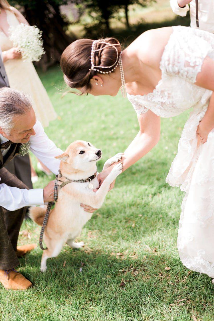 Dog Pet Bride Multicoloured DIY Rustic Wedding http://vickylamburn.com/