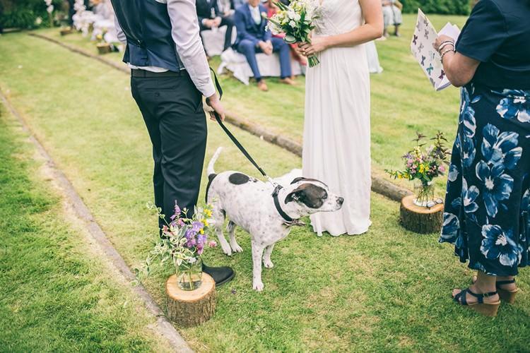 Dog Pet Bohemian Home Made Farm Wedding http://www.jessyarwood.co.uk/