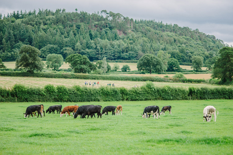 Big Top Farm Party Wedding http://www.robinstudios.com/