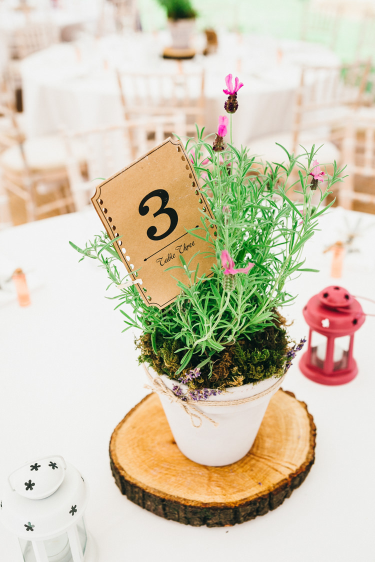 Potted Plant Centrepiece Table Decor Log Slice Table Number Magical Midsummer Night's Dream Wedding http://www.beatriciphotography.co.uk/
