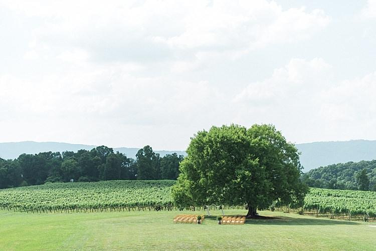 Ceremony Location Huge Tree Vineyards Green Grass Outdoor Spring Vineyard Wedding Tennessee http://www.juicebeatsphotography.com/