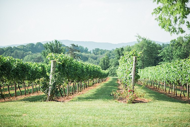 Ceremony Location Vineyards Green Grass Trees Outdoor Spring Vineyard Wedding Tennessee http://www.juicebeatsphotography.com/