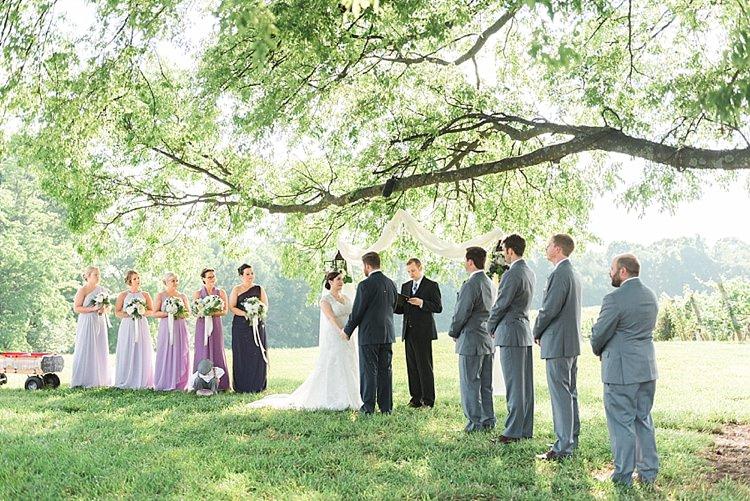 Outdoor Ceremony Bride Lace Cap Sleeve Bridal Gown Groom Navy Suit Bridesmaids Groomsmen Tree Outdoor Spring Vineyard Wedding Tennessee http://www.juicebeatsphotography.com/