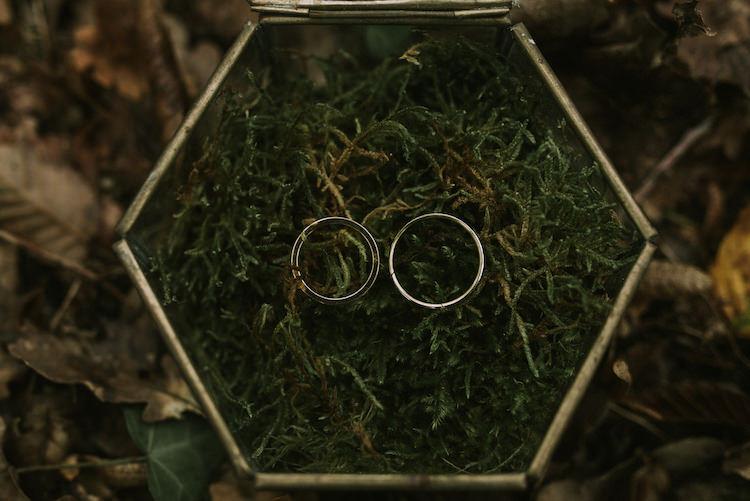 Wedding Rings Gold Box Greenery Organic Woodland Elopement Wedding Ideas http://www.miraalpajarito.es/