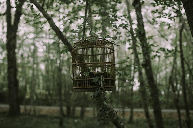 Hanging Décor Vintage Birdcage Organic Woodland Elopement Wedding Ideas http://www.miraalpajarito.es/