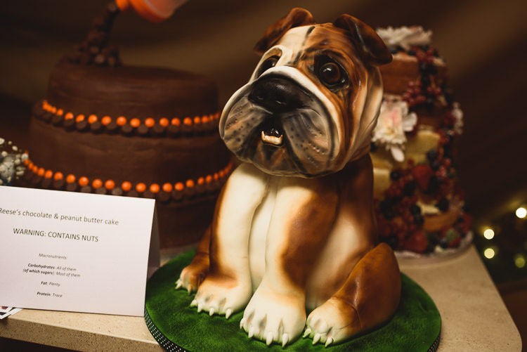 Pug Dog Cake Colourful Outdoorsy Festival Tipi Wedding http://www.jacksonandcophotography.com/