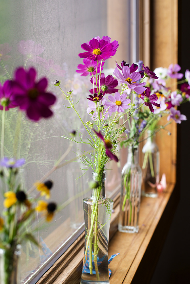 Fresh Florals Purple Yellow Daises Long Glass Vases Windowsill Woodland Waterfall Mint Wedding Ontario http://www.laurenmccormickphotography.com/
