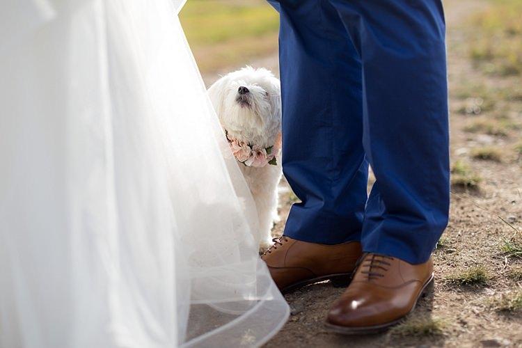Outdoor First Look Bride Groom Dog Pink Floral Collar Romantic Mountain Wedding Colorado http://irvingphotographydenver.com/