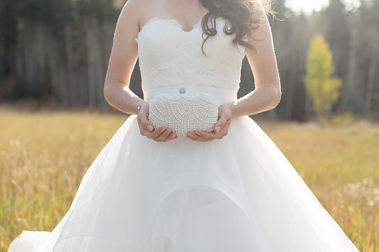 Bride Strapless Lace Ballgown Bridal Gown Loose Curls Hairstyle Embellished Pearl Clutch Romantic Mountain Wedding Colorado http://irvingphotographydenver.com/