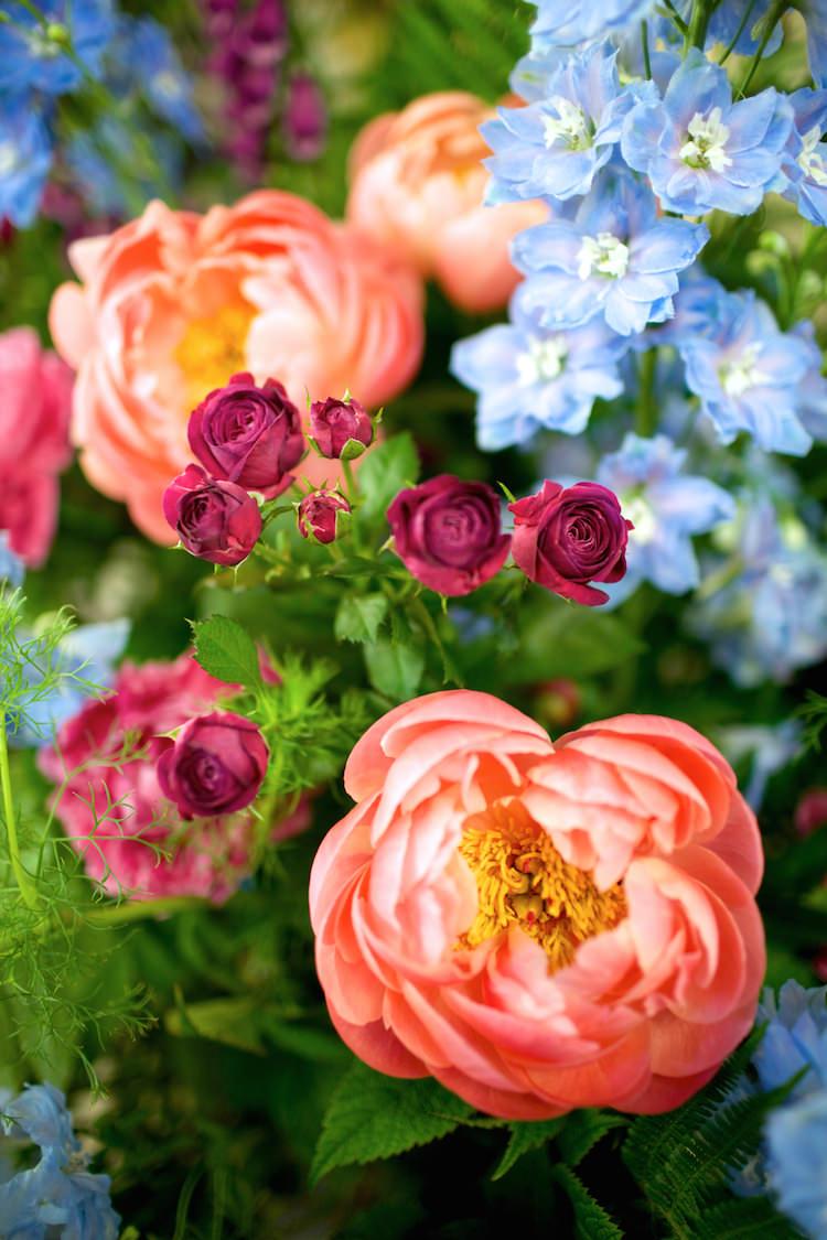 Coral Peony Peonies Floral Artistic Farm Wedding http://elizabetharmitage.com/