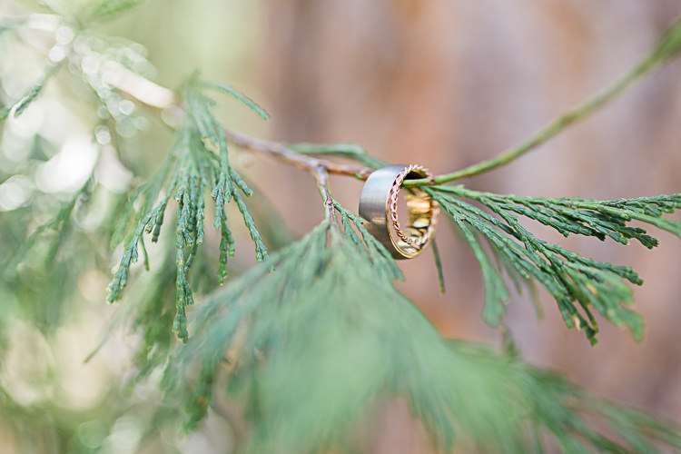 Gold Wedding Bands Tree Branch DIY Whimsical Camp Wedding California http://www.landbphotography.org/