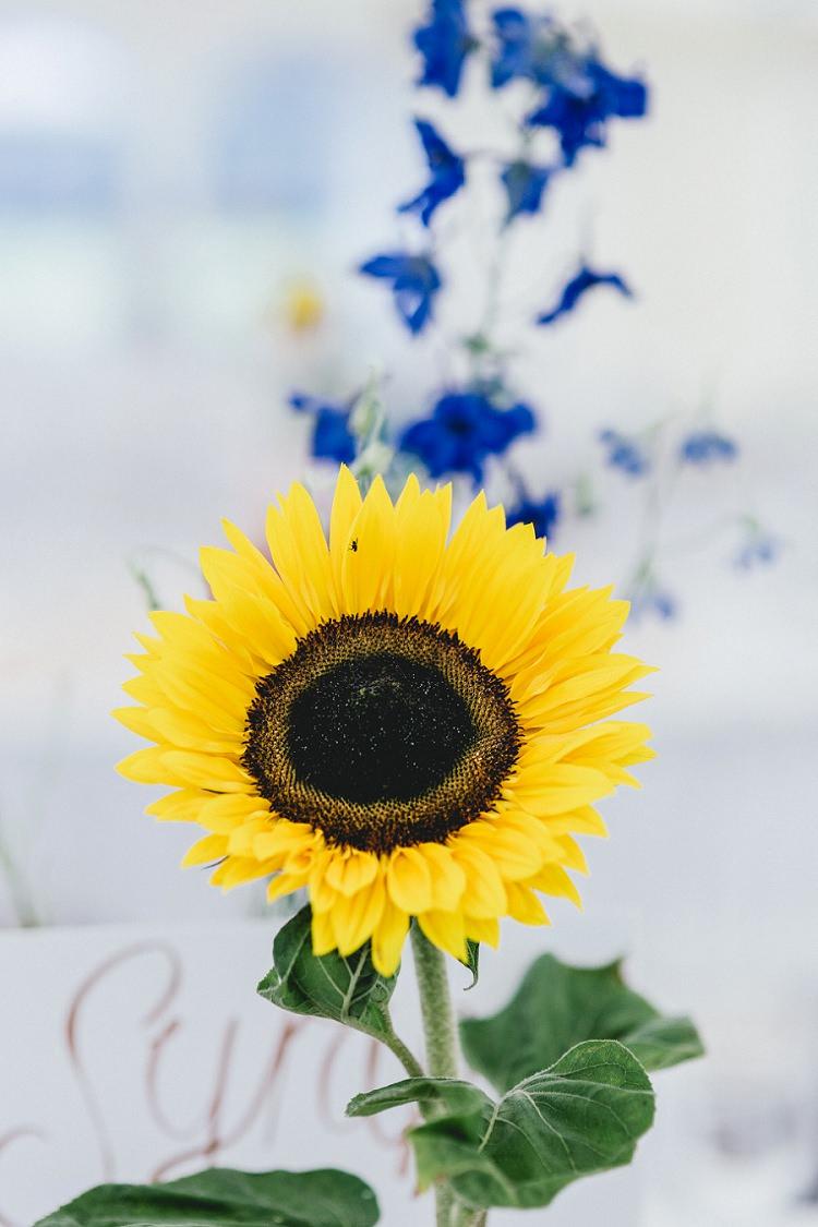 All Things Big Bright Beautiful Multicolour Wedding http://benjaminmathers.co.uk/