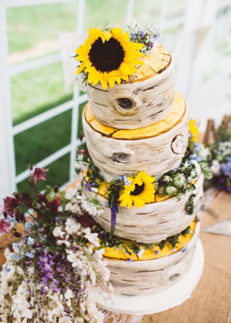 Tree Cake Silver Birch Bark Natural Woodland Hessian Lace Wedding http://holliecarlinphotography.com/