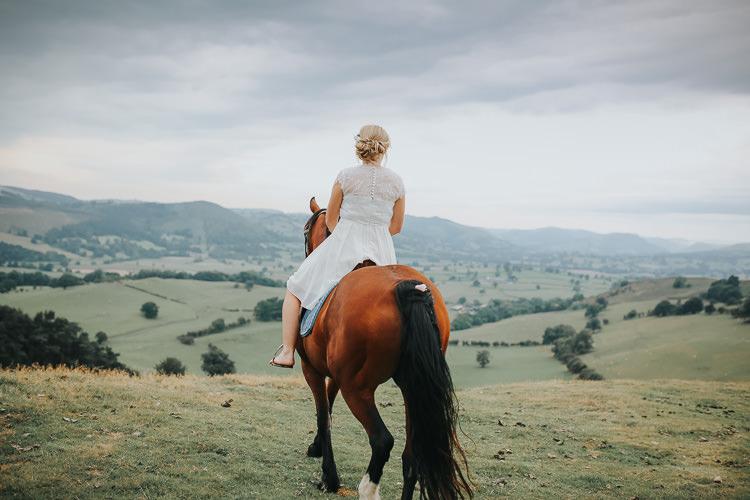 Pets Horse Wedding Transport Planning Help Ideas http://www.nestalloyd.co.uk/