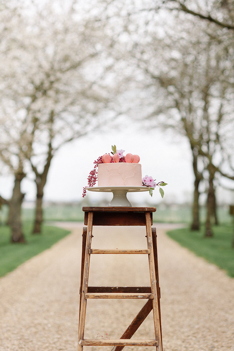 Cake Iced Buttercream Pink Macaron Berries Flowers Ladder Cherry Blossom Soft Spring Wedding Ideas http://www.photographybybea.co.uk/