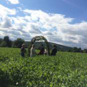 The Bride Diaries. Rebecca's Whole Lotta Love