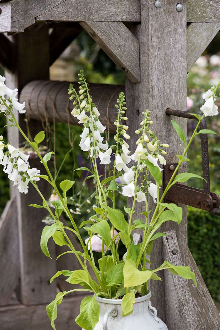 Steel Metal Milk Churn Foxglove Well Pretty Urban Nature Wedding Ideas http://www.fionasweddingphotography.co.uk/