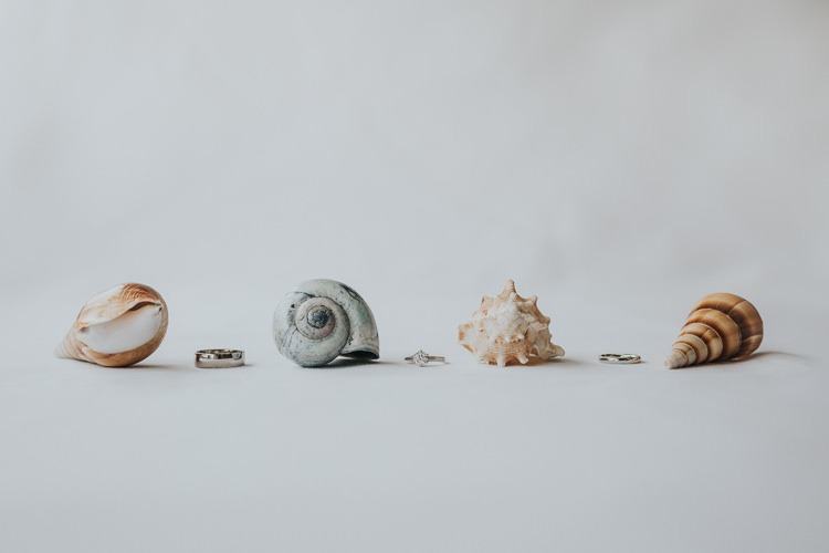 Rings Bands Shells Colour Pop Coral Beach Wedding http://www.kategrayphotography.com/