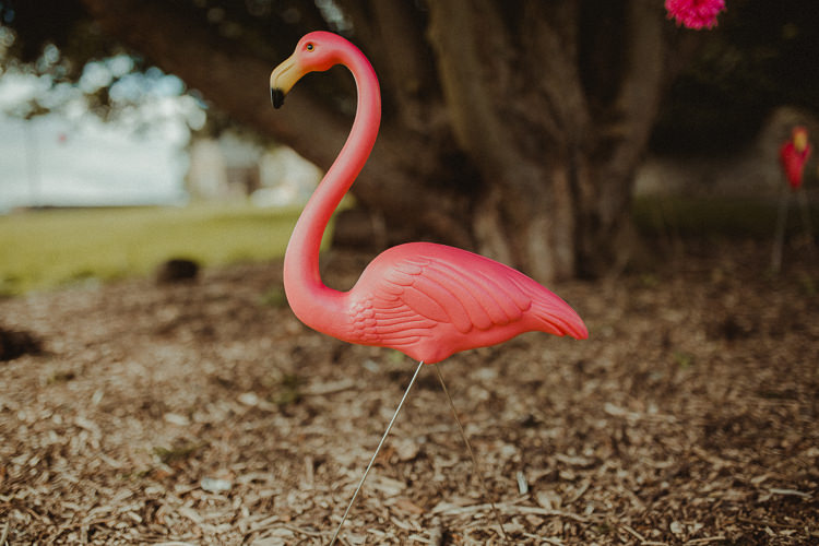 Flamingo Eclectic Kitsch Retro Fete Wedding http://www.belleartphotography.com/