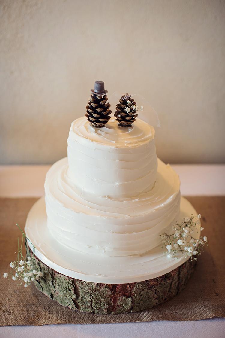Buttercream Cake Pine Cones Topper Gypsophila Log http://www.tireedawson.co.uk/