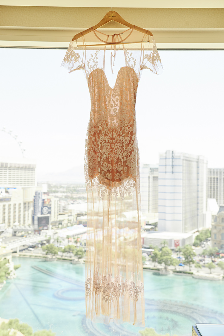 Dress Gown Sheer Lace Sleeves Blush Pink Hanging Up Hip Elvis Las Vegas Destination Wedding http://www.roseimages.co.uk/