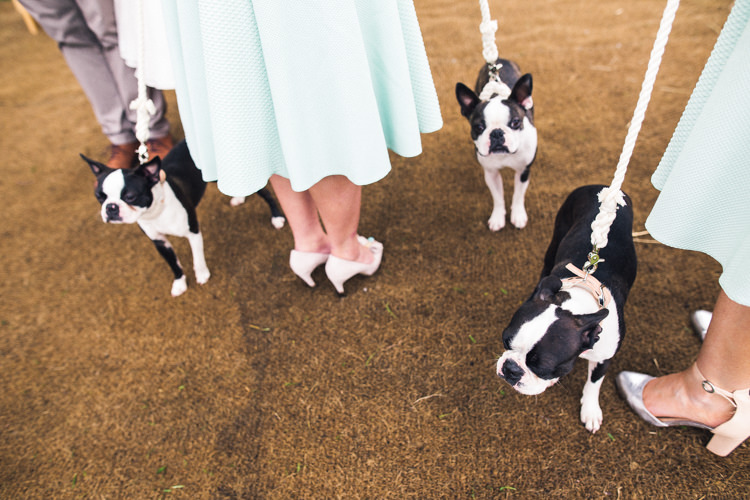 Dogs Pets Outdoorsy Welcoming Colourful Tipi Wedding http://www.sallytphoto.com/