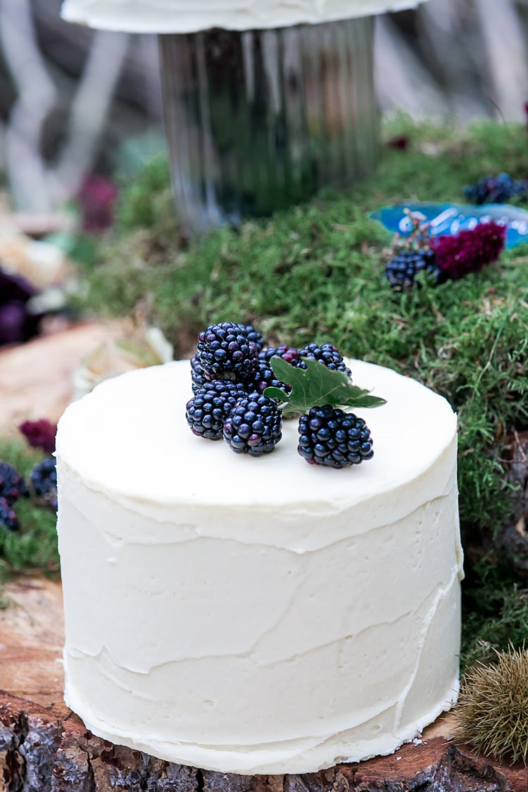 Buttercream Cakes Log Moss Fruit 1970s Gypsy Bohemian Autumn Woodland Wedding Ideas http://carolineopacicphotography.com/