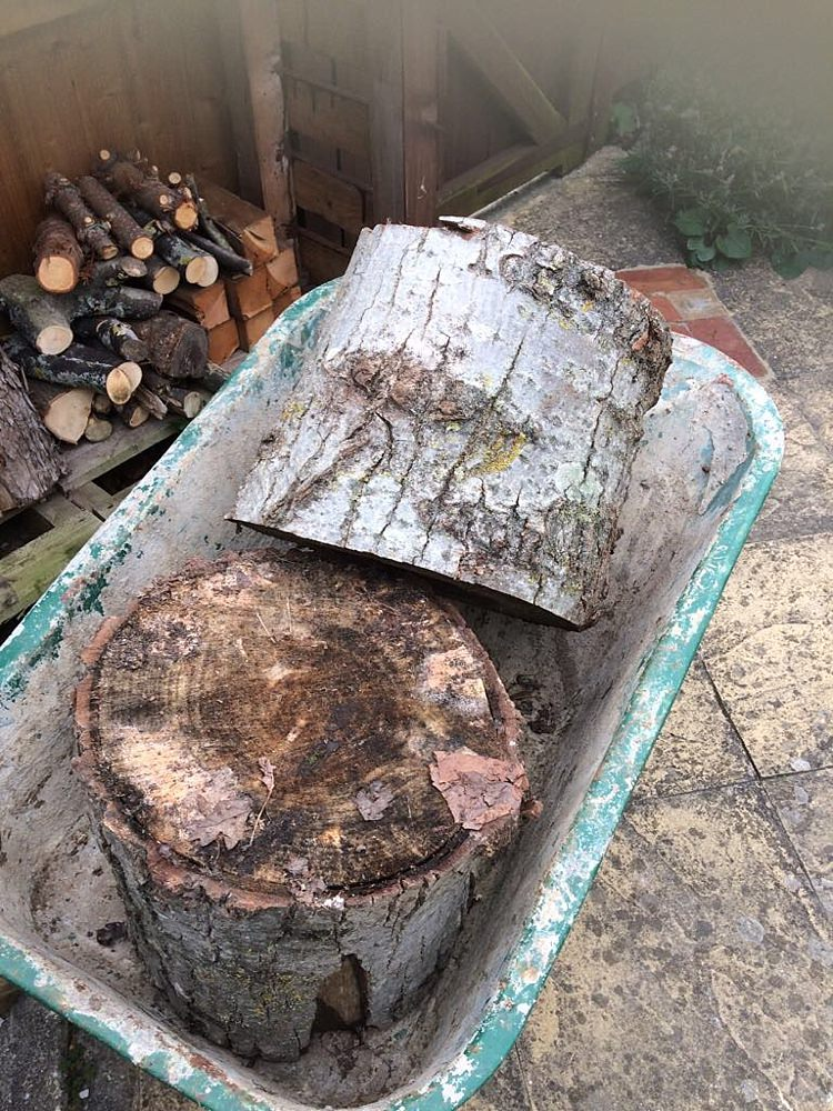 Wedding DIY Blog Tree Trunks Wood Logs