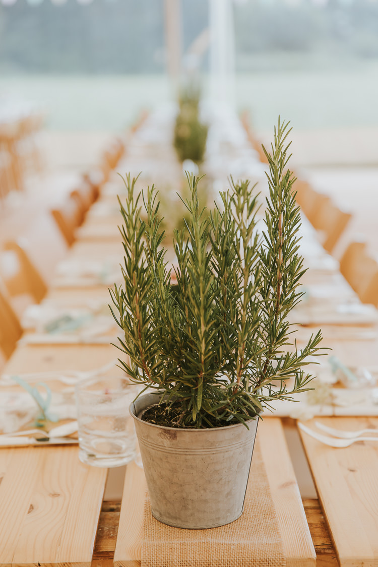 Rosemary Potted Plant Decor Tables Sperry Tent Marquee Farm Wedding http://www.paulunderhill.com/