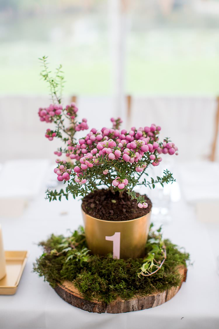 Centrepiece Flowers Pot Number Table Lof Slice Moss Rustic Autumn Blush Pink Gold Wedding Narborough Hall Gardens Norfolk http://katherineashdown.co.uk/
