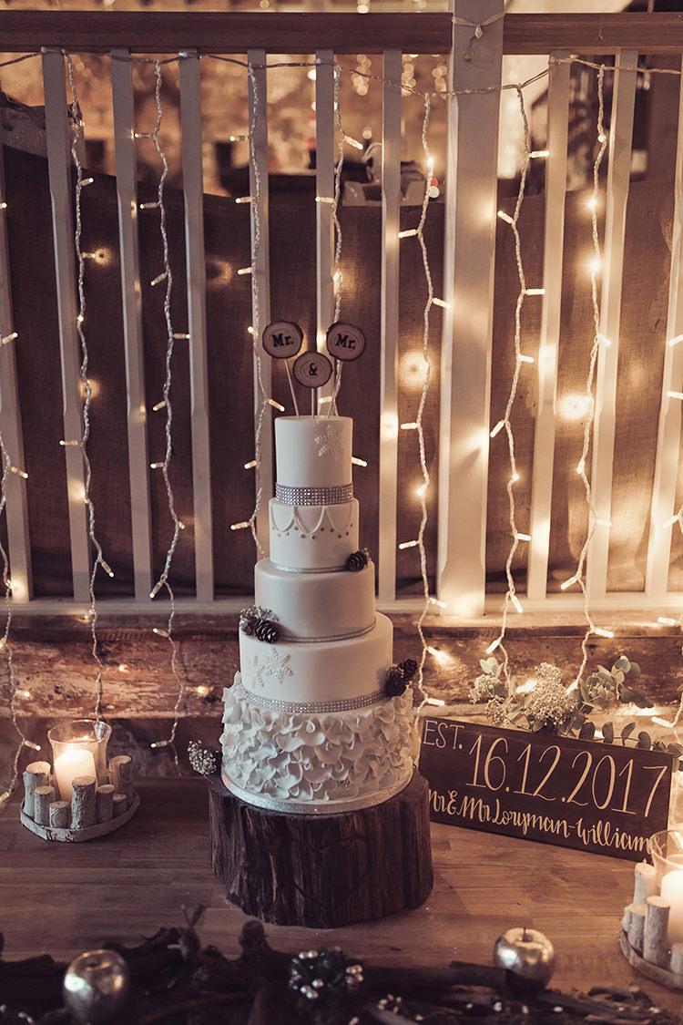 Cake Diamante Mr & Mr Pea Fairy Light Wood Slice Log Magical Wonderland Askham Hall Wedding Winter Tiree Dawson Photography
