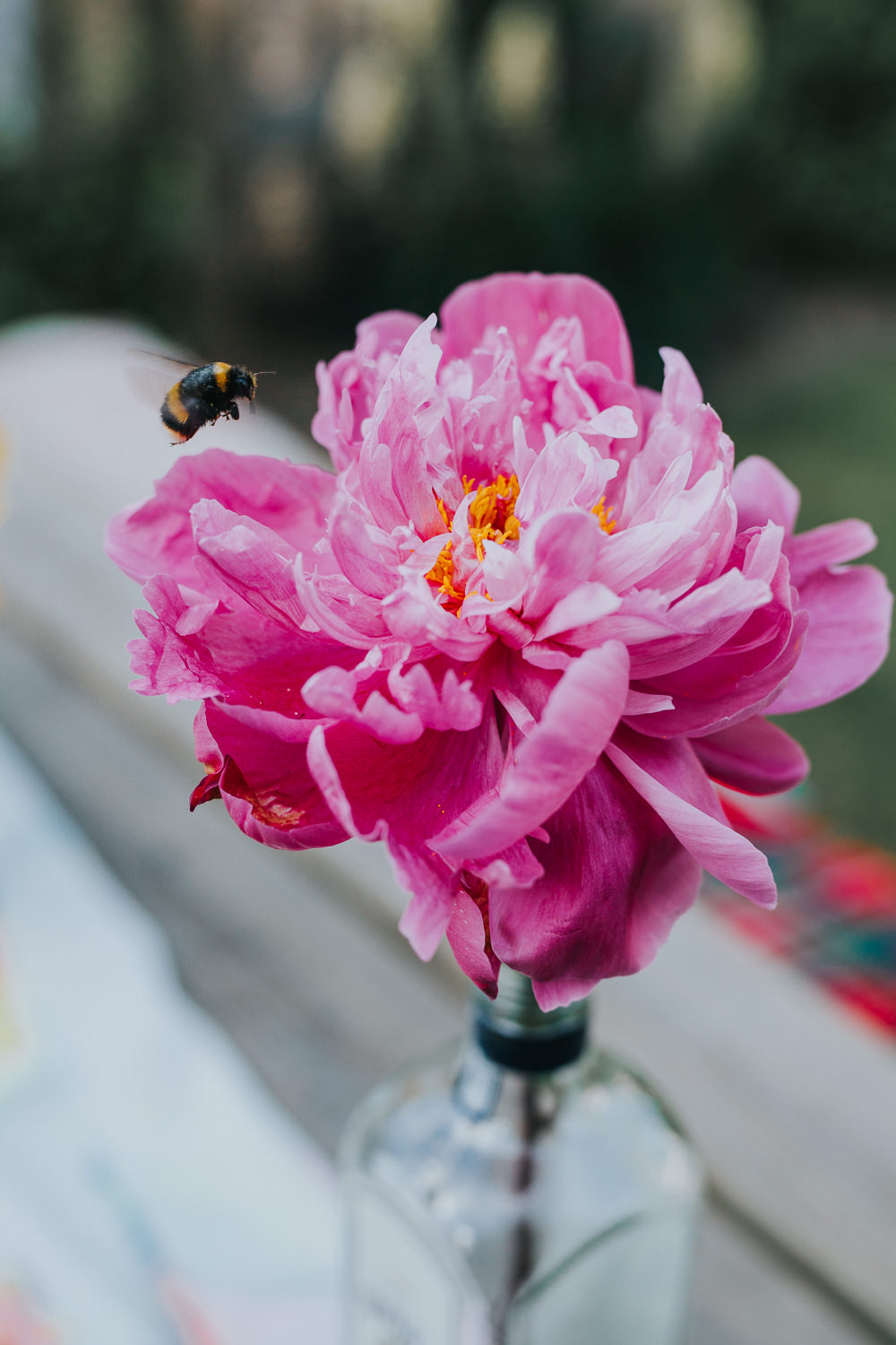 Bottle Jar Flowers Peony Bee Pink Table Decor Colourful Bright Summer Pub Wedding Charlotte Razzell Photography