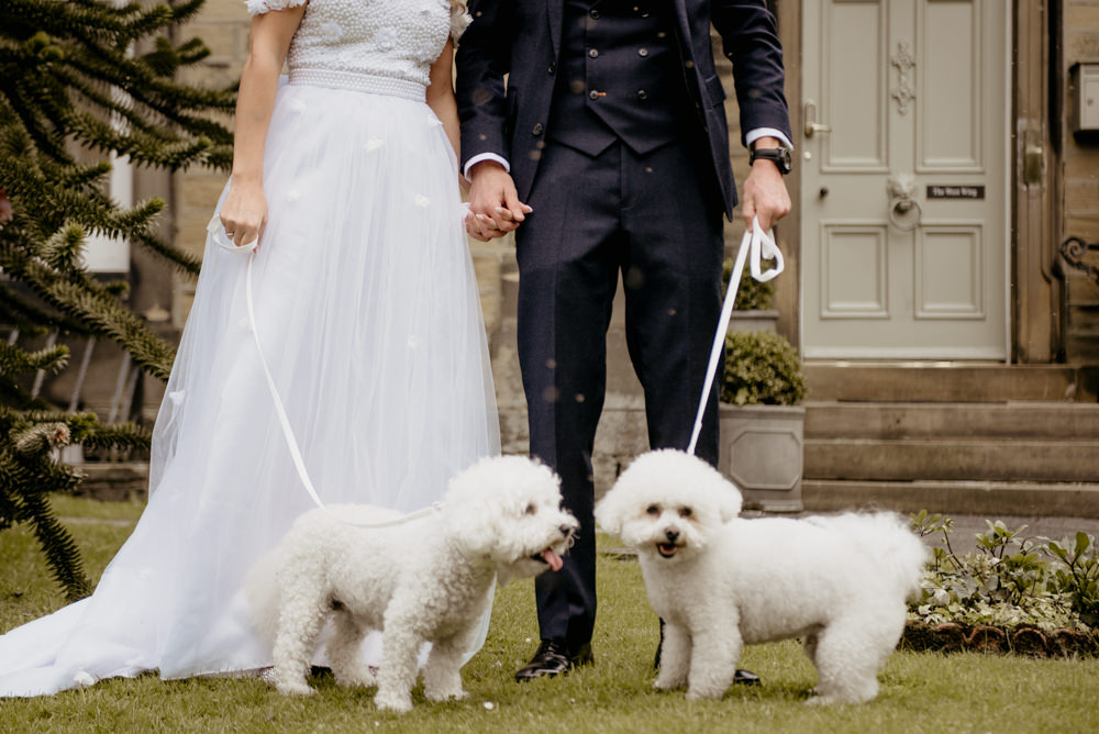 Dogs Pets Crow Hill Wedding Tim Simpson Photography