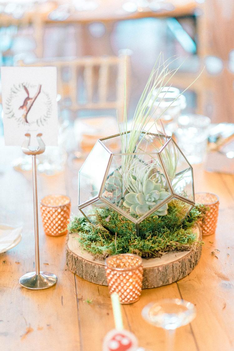Terrarium Copper Log Slice Centrepiece Decor Newton Hall Wedding Sarah-Jane Ethan Photography
