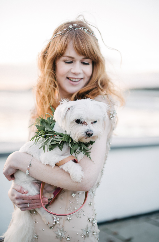 Bride Bridal Dog Pet Foliage Greenery Collar Garland Orange Tree House Wedding Winter You Them Us Photography