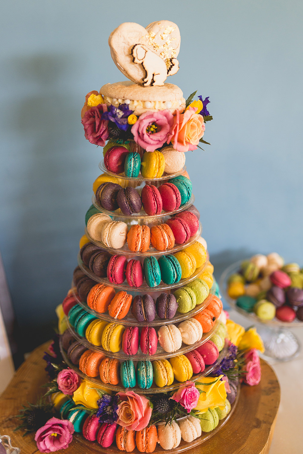 Colourful Multicolour Rainbow Macaron Tower Cake Topper Dog Hothorpe Hall Woodlands Wedding Lucy Long Photography